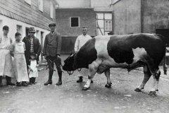 Alexander Jedowski sen. (mit Hut) mit seinem Sohn und Landwirt Busche Langenholthausen 1938